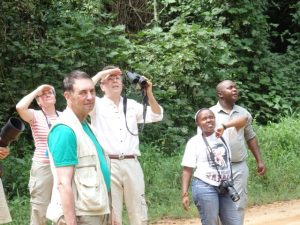 birding-bwindi-impenetrable-forest