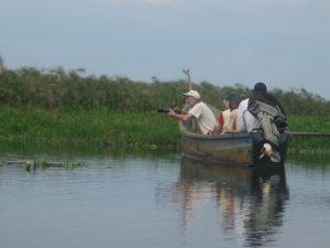 mabamba-swamp