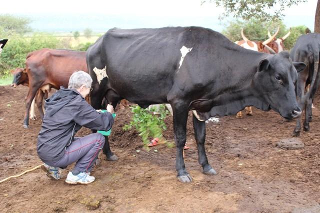 Cultural Safaris in Uganda and Rwanda