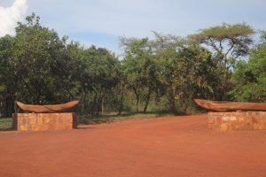 rwanda-akagera-park