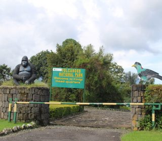 14 Days Discover Rwanda Safari